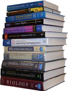 636064728036730794-374088886_2009-bookstack-2